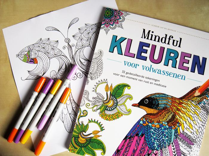 Kleurboeken Voor Volwassenen Verbeelding